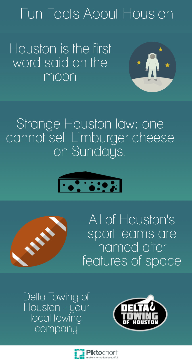 Fun Houston Infographic