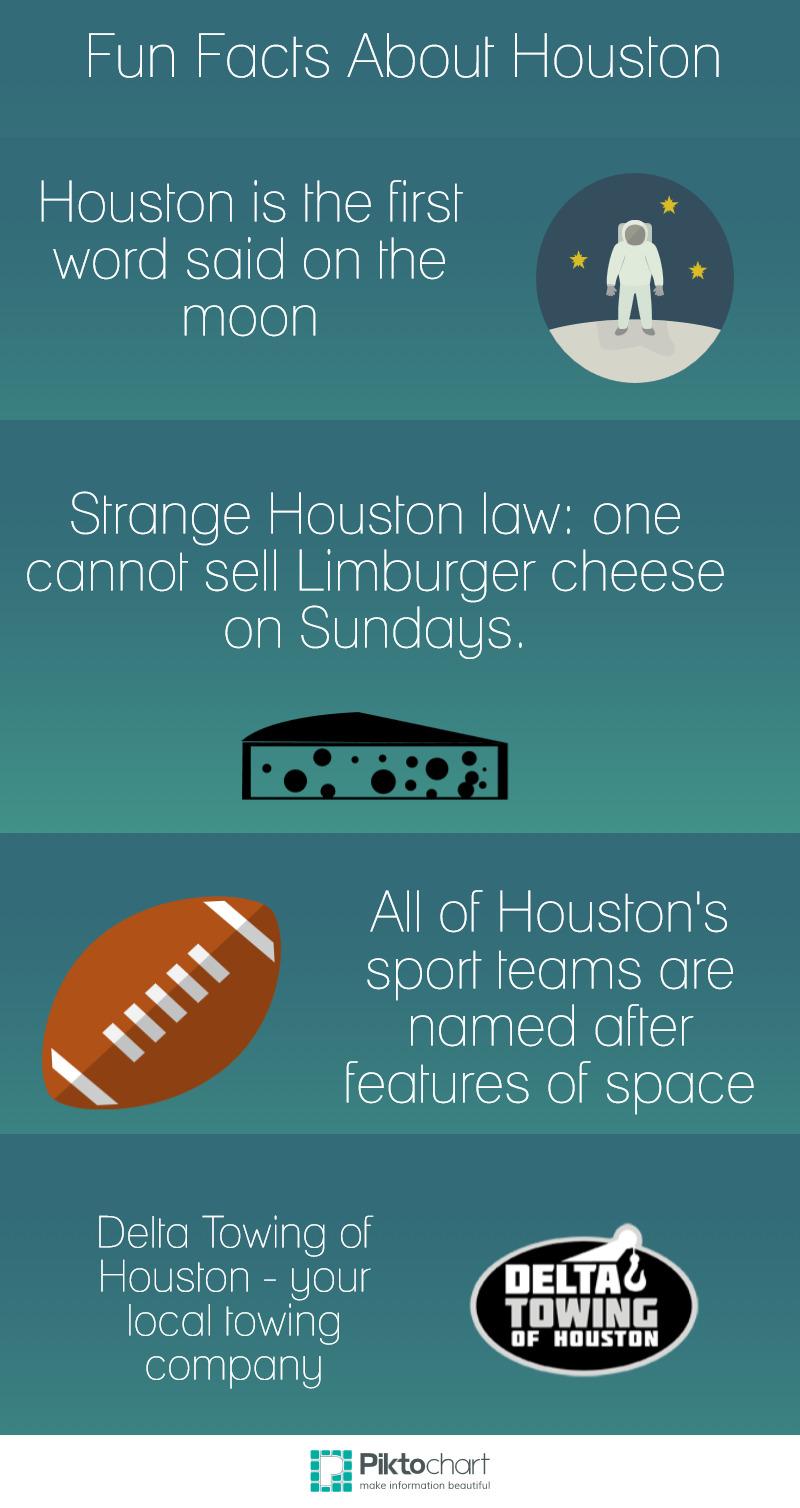 Fun Houston Infographic